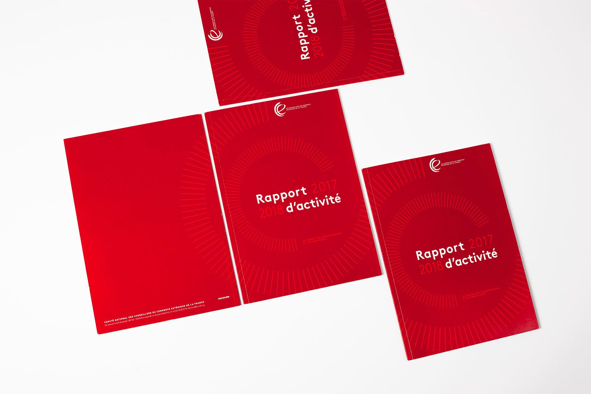 mise en page rapport annuel cnccef